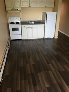 Large 1-Bedroom Apartment Available March 1st, 2018