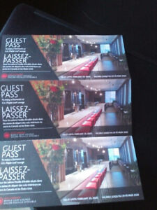 Air Canada Maple Leaf Lounge Pass  - expires Feb. 29, 2020
