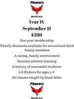 Phoenix Martial Arts $399! Two weeks free to try!