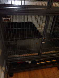 Ferret Nation double cage and accessories