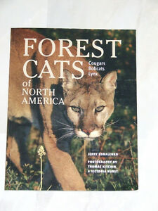 Forest Cats of North America -- Cougars, Bobcats and Lynx