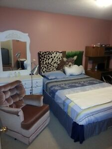 A beautiful room in Centrepointe close to Algonquin college!