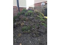 Garden soil / waste! free !!!