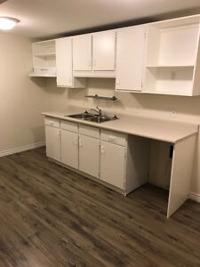 Bachelor basement apartment with great walkscore