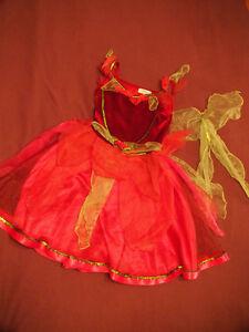 Robe de fées - déguisement