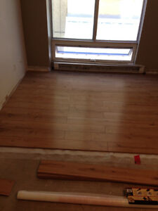 Give us a call for your Renovations. London Ontario image 7