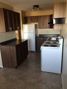 Renovated 2 bedroom 4 plex suite in Redcliff