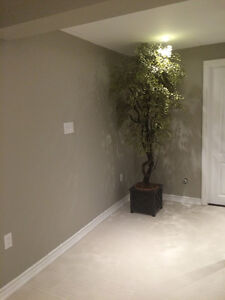 One very spacious bedroom in shared basement