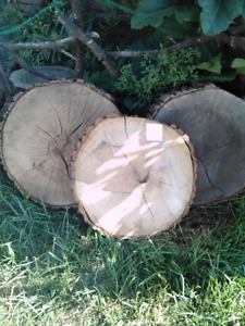Live Edge Rounds & Other Items