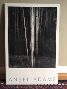 Authorized Edition Ansel Adams Poster