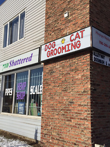 Edmonton Finest Dog Grooming