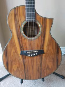 Ibanez Cocobolo Acoustic