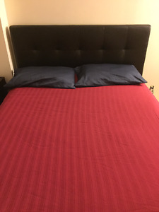 Full leather bed - (Free Mattress and Box spring) - side table