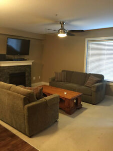 Condo- 1 Bedroom + Den (Can be Used as 2nd Bedroom)