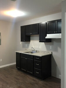 Newly Renovated bachelor apartment (Everything brand new)