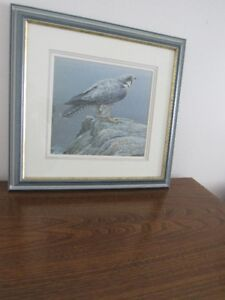 "Framed Print by Robert Bateman ""Ready For Flight"""