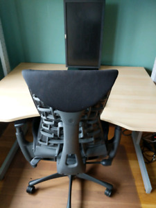Embody Office Chair (w ext., gas cyl, for tall)