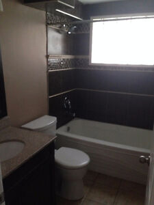 Newly renovated 2 bedroom basement suite Strathcona County Edmonton Area image 6