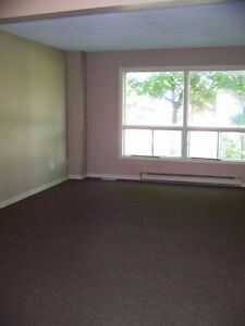 THREE BEDROOM CONDO CLOSE TO FANSHAWE Stratford Kitchener Area image 4