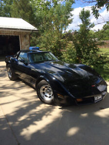 81 vette. Head turner and cougar catcher.