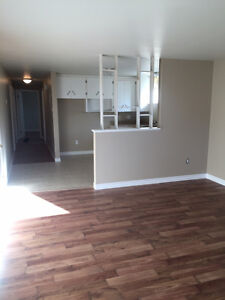 Dieppe, Newly Renovated 2 Bedroom apartment.