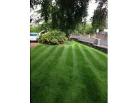 CM Landscaping & Garden Care. LAWN CARE