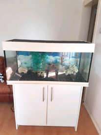 Aqua one 180 fish tank and Stand For sale full set up