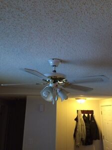 "Ceiling fan 42"" Prince George British Columbia image 2"