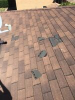 Roof Repairs (loose or missing shingle Replacment)