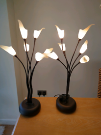 Beautiful pair of matching flower bud lamps, excellent condition