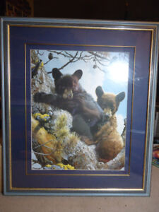 BABY BLACK BEAR&BABY BROWN BEAR CUB  FRAMED PICTURE
