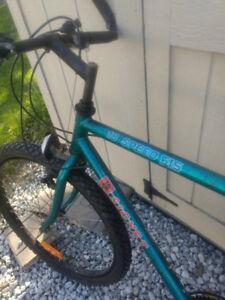 """18 speed 26"""" bike in Tibury"""