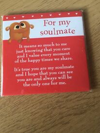Soulmate magnet *new*