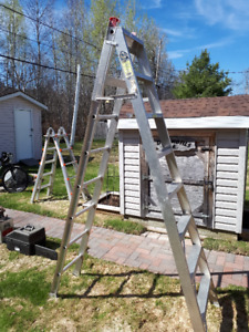 Step and extension ladder