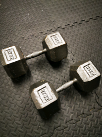 27.5kg hex dumbell weights