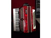 Accordion Parrot for sale