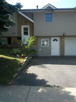 1 bdr lower level house in Country Hills available Oct 1st