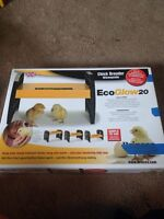 Eco glow 20 chick brooder