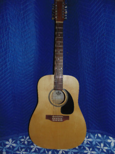 Norman 12 String Acoustic with pick-up