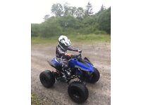 110cc fully automatic quad