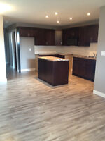 NEW – 2 Bedroom, 1 Bathroom Basement Suite Available Oct 1st