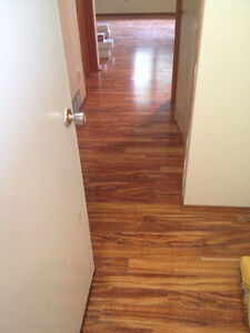 1 bed room basement availale