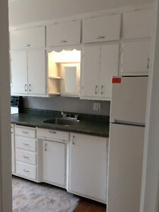 Gorgeous Lindsay Century Home Apt- 1BR/1BTH...Clean and Fresh!