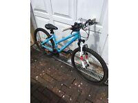 Dawes Paris - Girls Mountain Bike - Like New