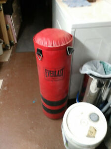 Brand New Everlast Heavy/Boxing Bag and Accessories