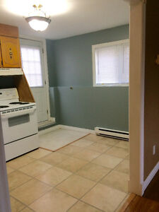 Two Bedroom Basement Apartment located In Goulds.