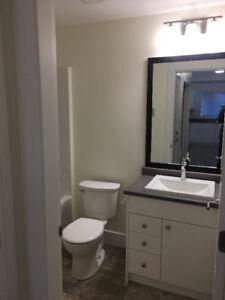 1 bedroom basement in Langoford