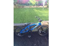BMX bike, DK Bicycles 6 pack