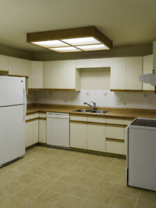 Terra Losa Bungalow style condo for 45+ non-smoking adults