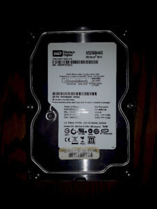 Western Digital 250 Gb SATA hard drive